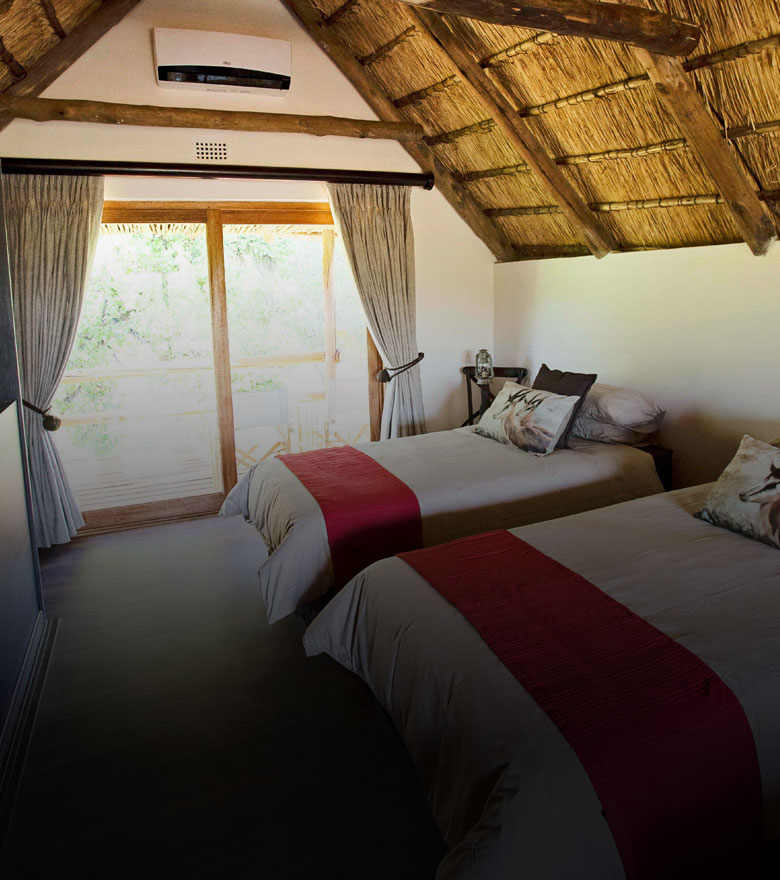 data-safaris-accommodation